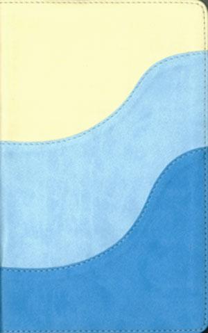 Biblia Bilingüe RVR 1960-NIV tamaño personal dos tonos italiano
