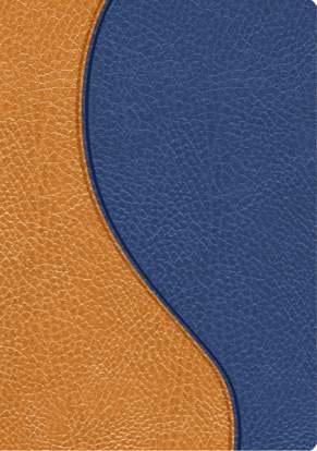 Biblia Promesas RVR60 Compacta piel azul-marron
