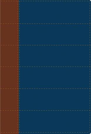 Santa Biblia thompson RVR60 Duo tono Azul ed especial para el es